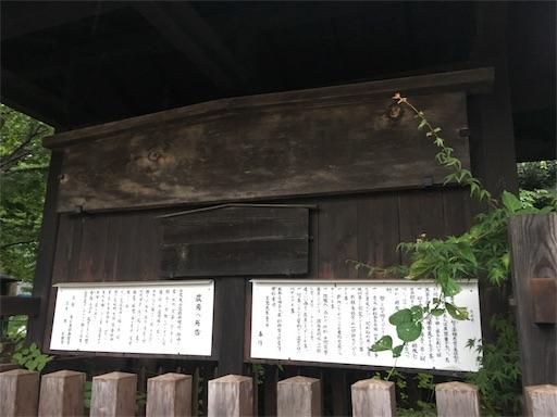 f:id:gakublog:20180808205501j:image