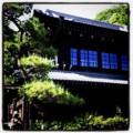 今日の小江戸ハンティングは、川崎の日本民家園に行って大満足(´ー`