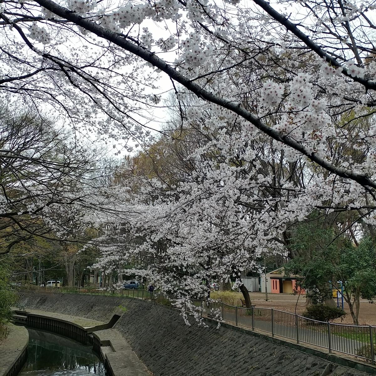 f:id:gakusama:20190402010924j:plain