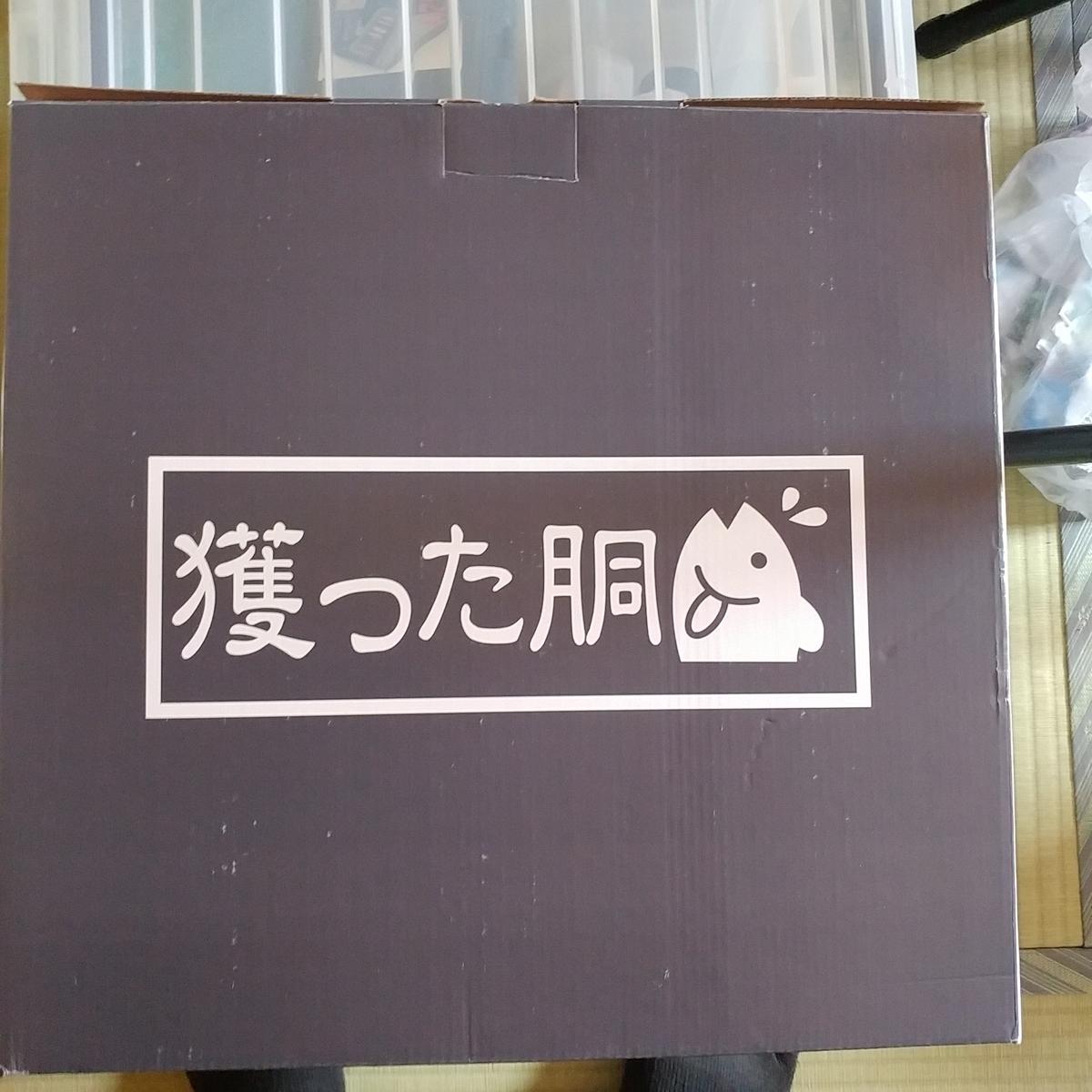 f:id:gakusama:20190429095215j:plain