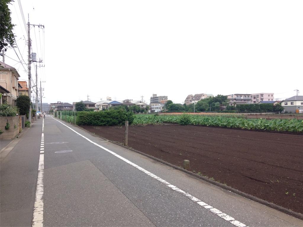 f:id:gakushoku2016:20160706214009j:image