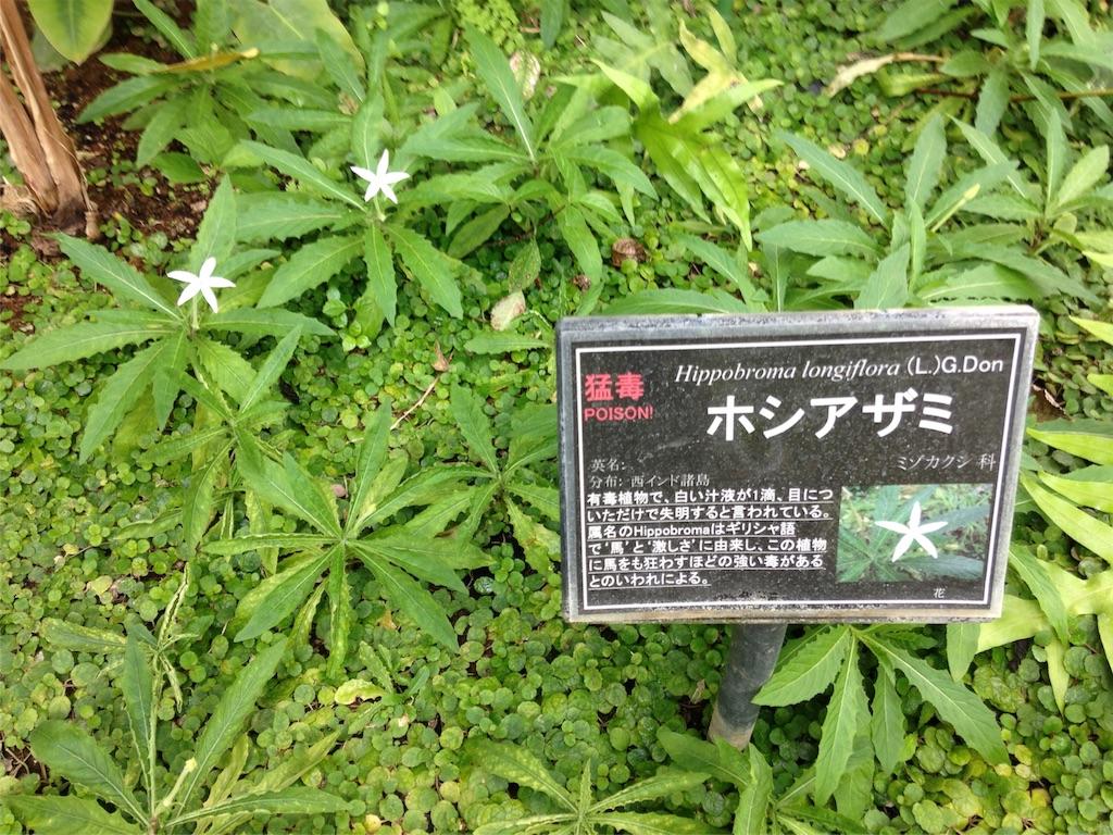 f:id:gakushoku2016:20160726011713j:image