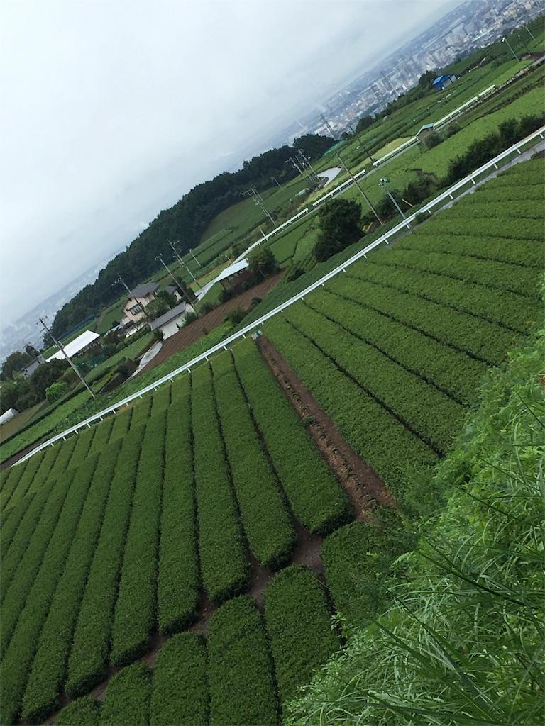 f:id:gakushoku2016:20160920143111j:image