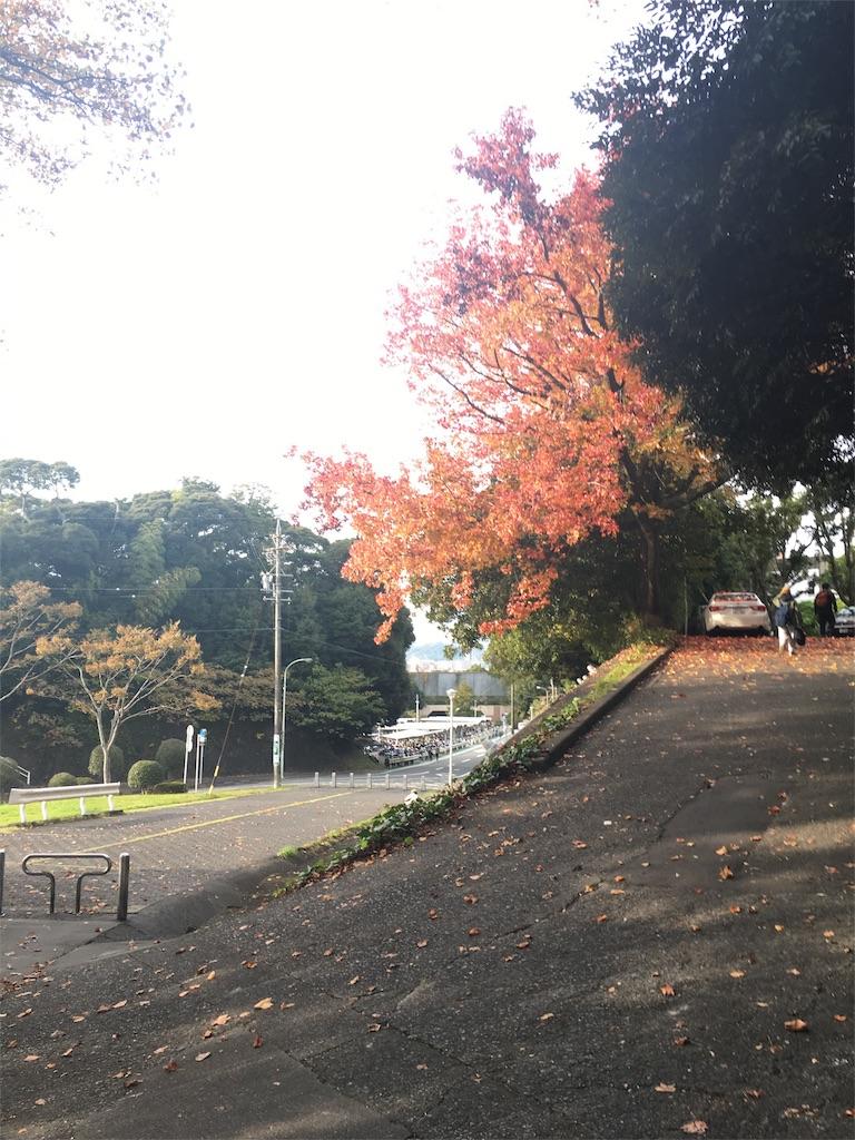 f:id:gakushoku2016:20161119100649j:image