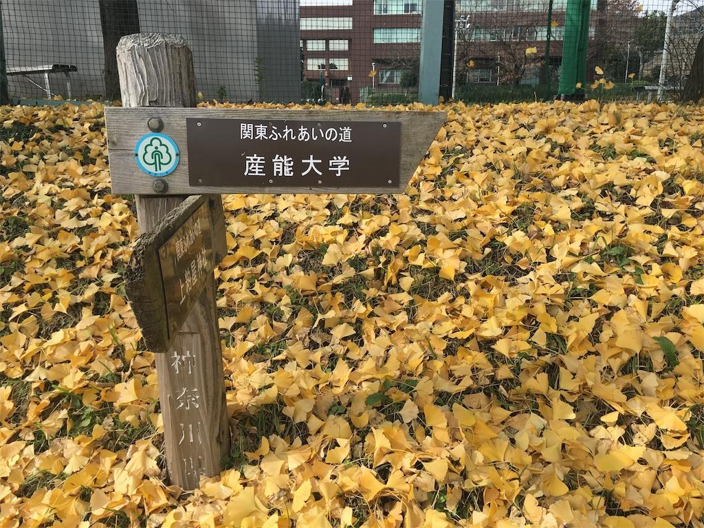 f:id:gakushoku2016:20161205091335j:image