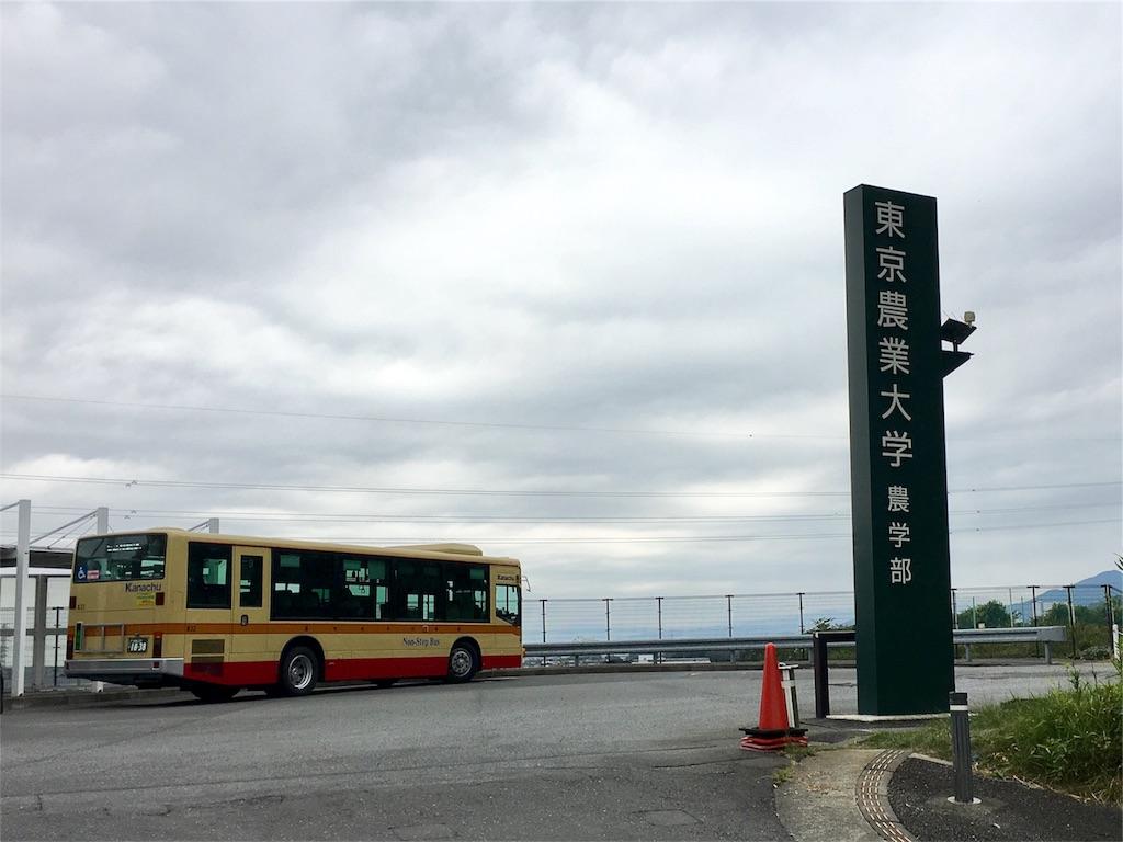 f:id:gakushoku2016:20180820151137j:image