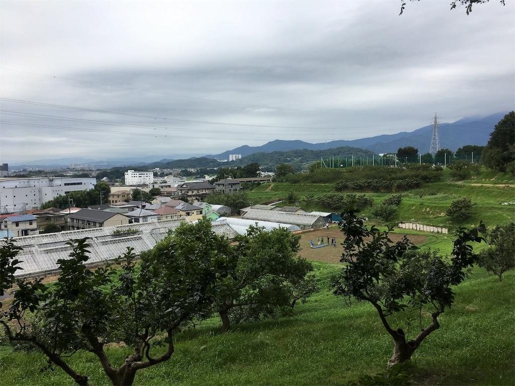 f:id:gakushoku2016:20180820151533j:image