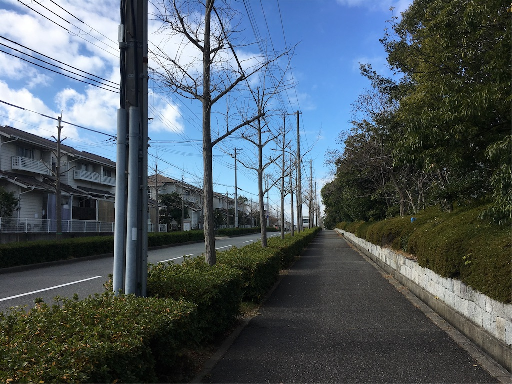 f:id:gakushoku2016:20181219214646j:image