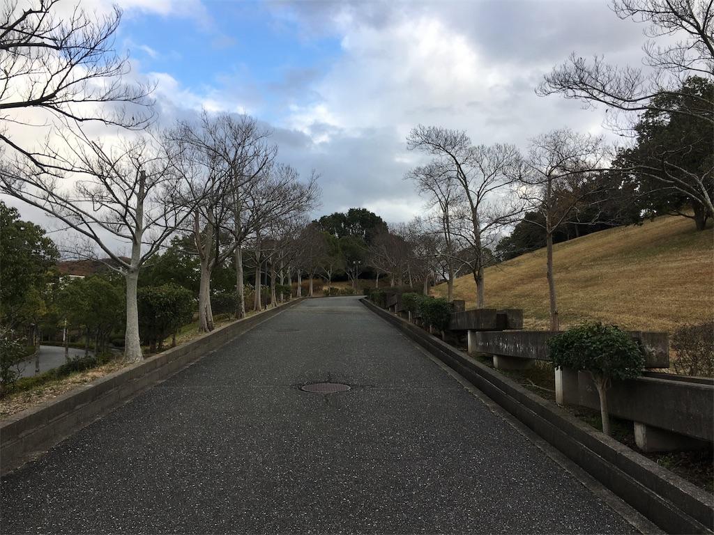 f:id:gakushoku2016:20190114122956j:image