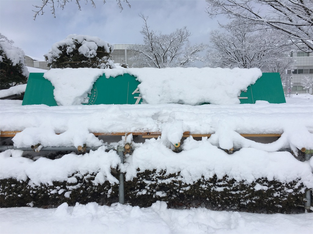 f:id:gakushoku2016:20190122213839j:image