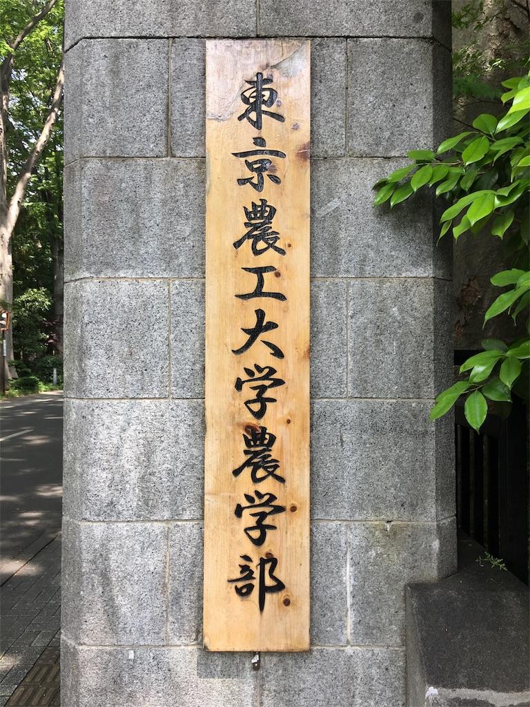 f:id:gakushoku2016:20190603220641j:image