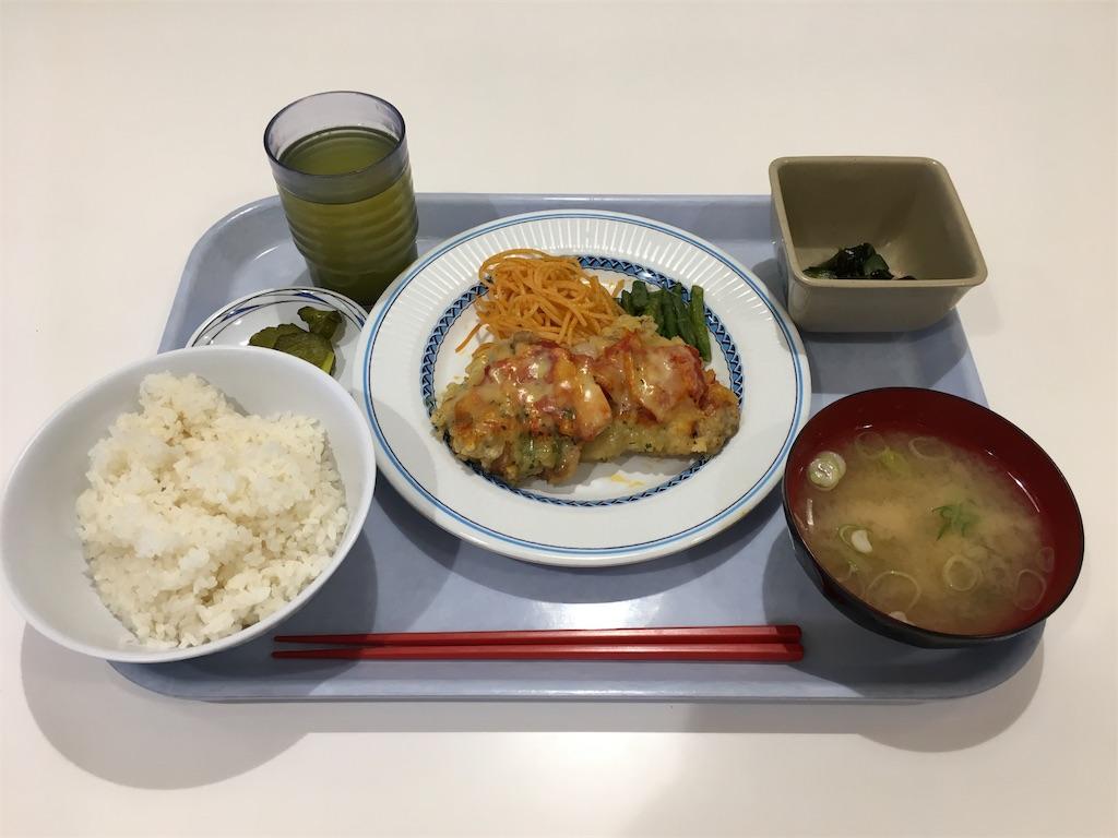 f:id:gakushoku2016:20190625203337j:image