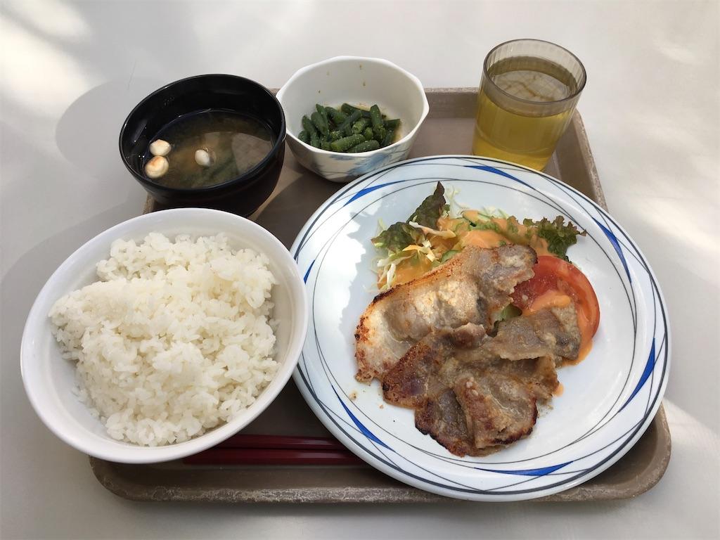 f:id:gakushoku2016:20200206205244j:image