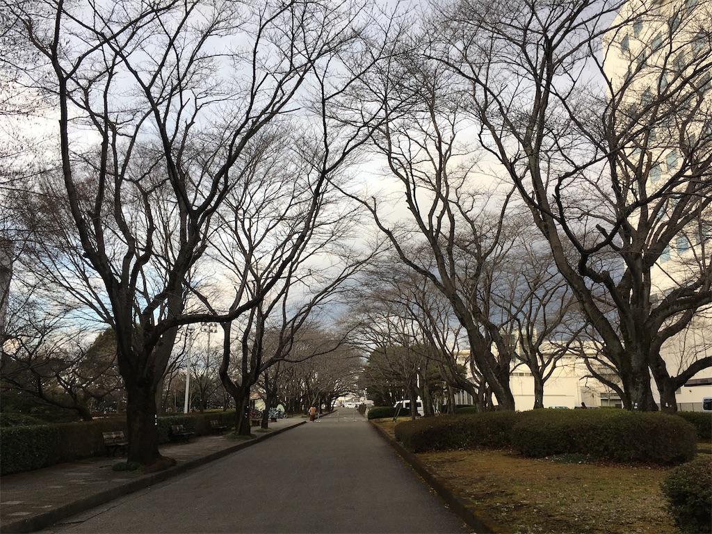 f:id:gakushoku2016:20200228183952j:image
