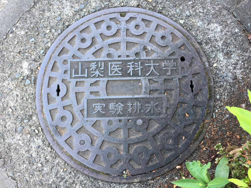 f:id:gakushoku2016:20201007105848j:image
