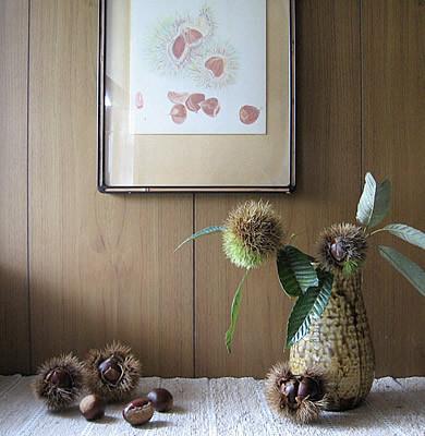 f:id:gallerybaaba:20121006175215j:image:w390