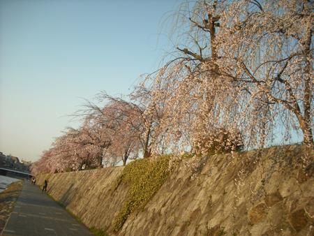 f:id:gallerymain_nakazawa:20110327172542j:image