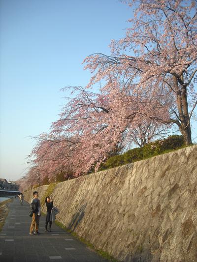 f:id:gallerymain_nakazawa:20110327172651j:image