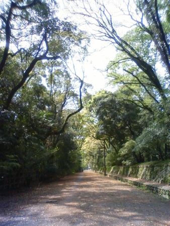 f:id:gallerymain_nakazawa:20110419101700j:image
