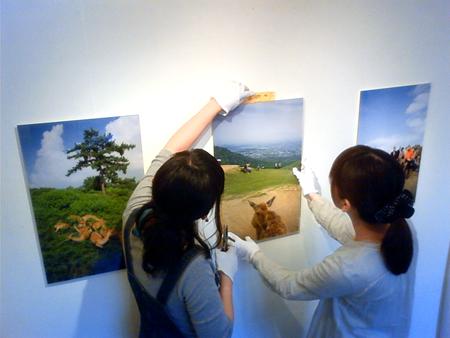 f:id:gallerymain_nakazawa:20110602173300j:image