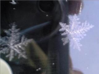 フロントガラス上の氷