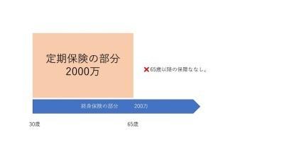 f:id:gambiecat:20200303130253j:plain