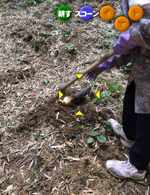 ゼルダの伝説時のオカリナの要領でタケノコ掘り
