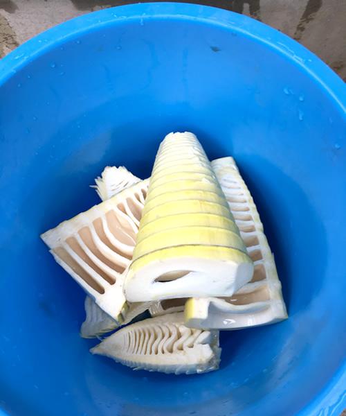 タケノコごはんのレシピと作り方、タケノコをよく洗う