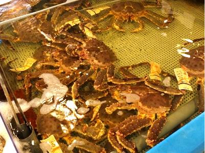 どうぶつの森で学ぶタラバ蟹のオモシロ雑学