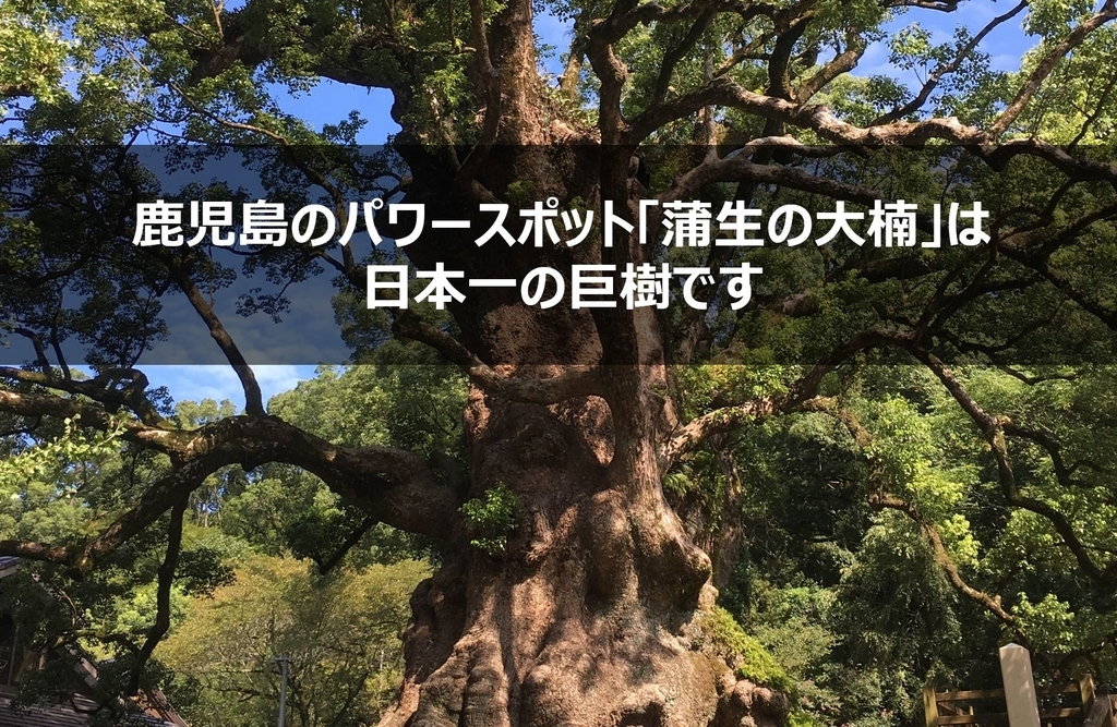 f:id:gami_bookmark:20180927085541j:plain