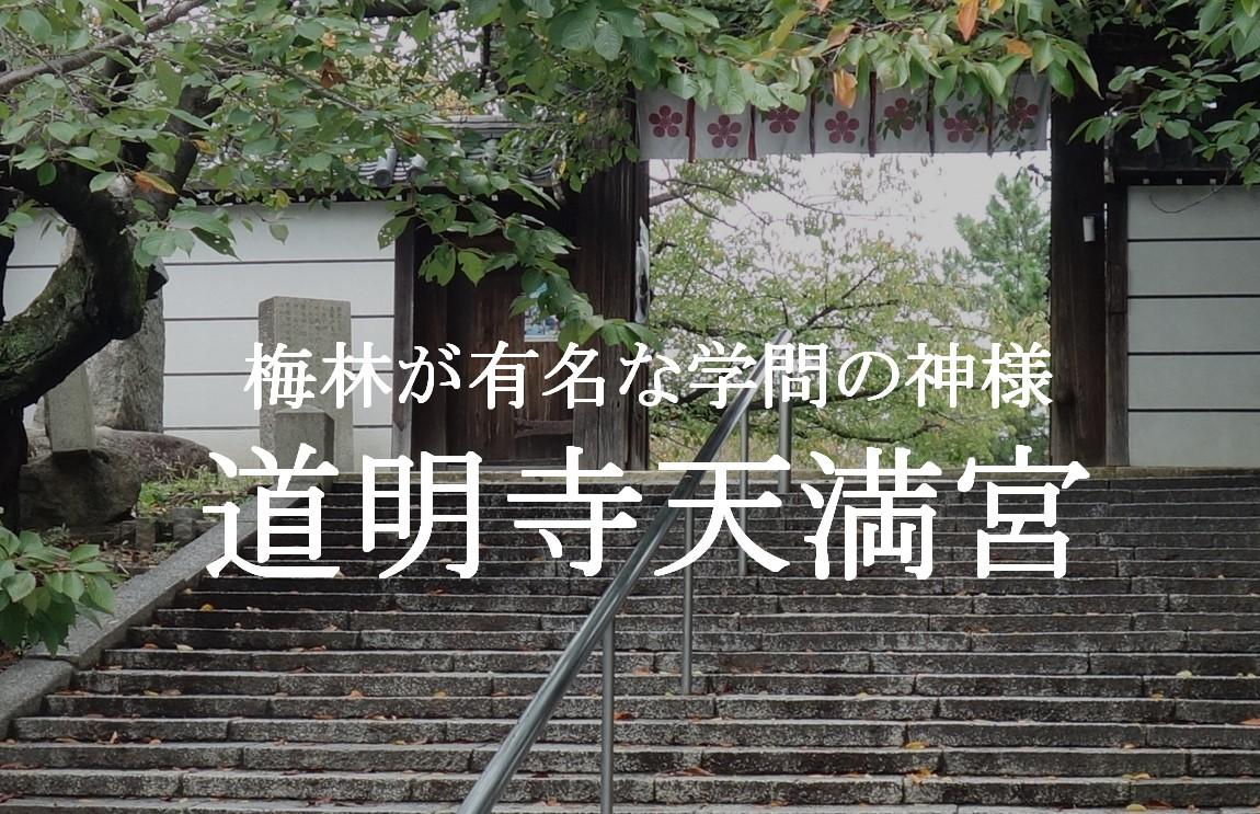 f:id:gami_bookmark:20201110154823j:plain