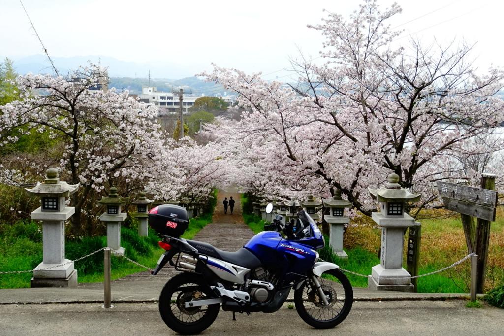f:id:gan_jiro:20170409135246j:plain