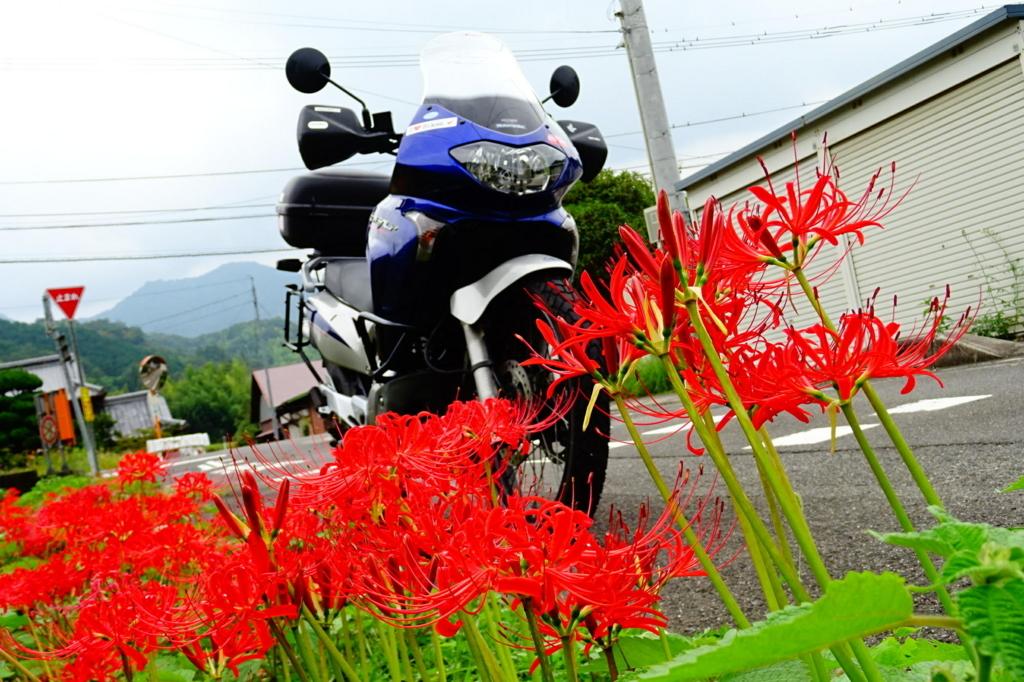 f:id:gan_jiro:20170923124508j:plain