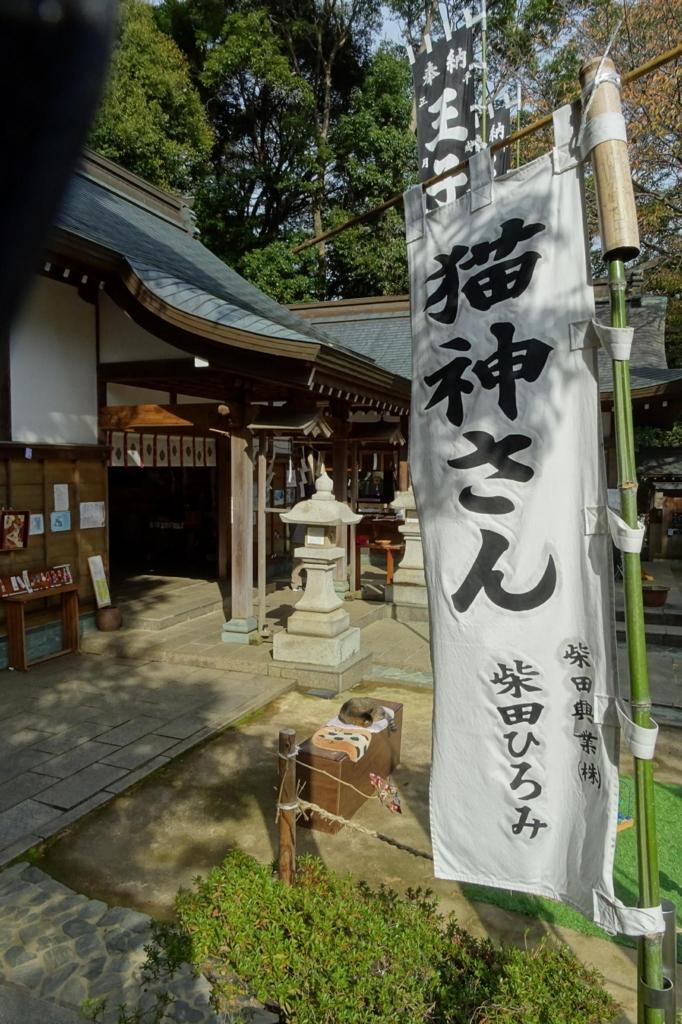 f:id:gan_jiro:20171125105424j:plain