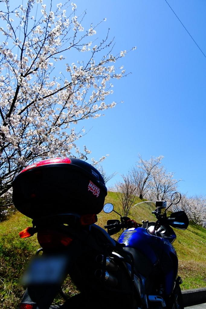 f:id:gan_jiro:20180324122725j:plain