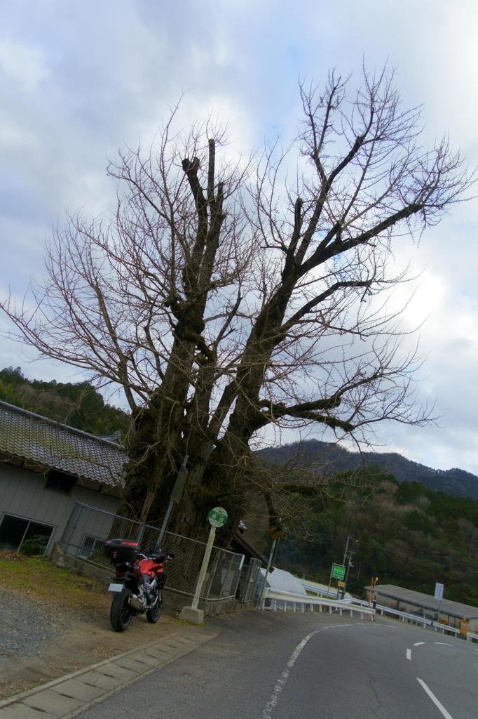 f:id:gan_jiro:20190106161218j:plain