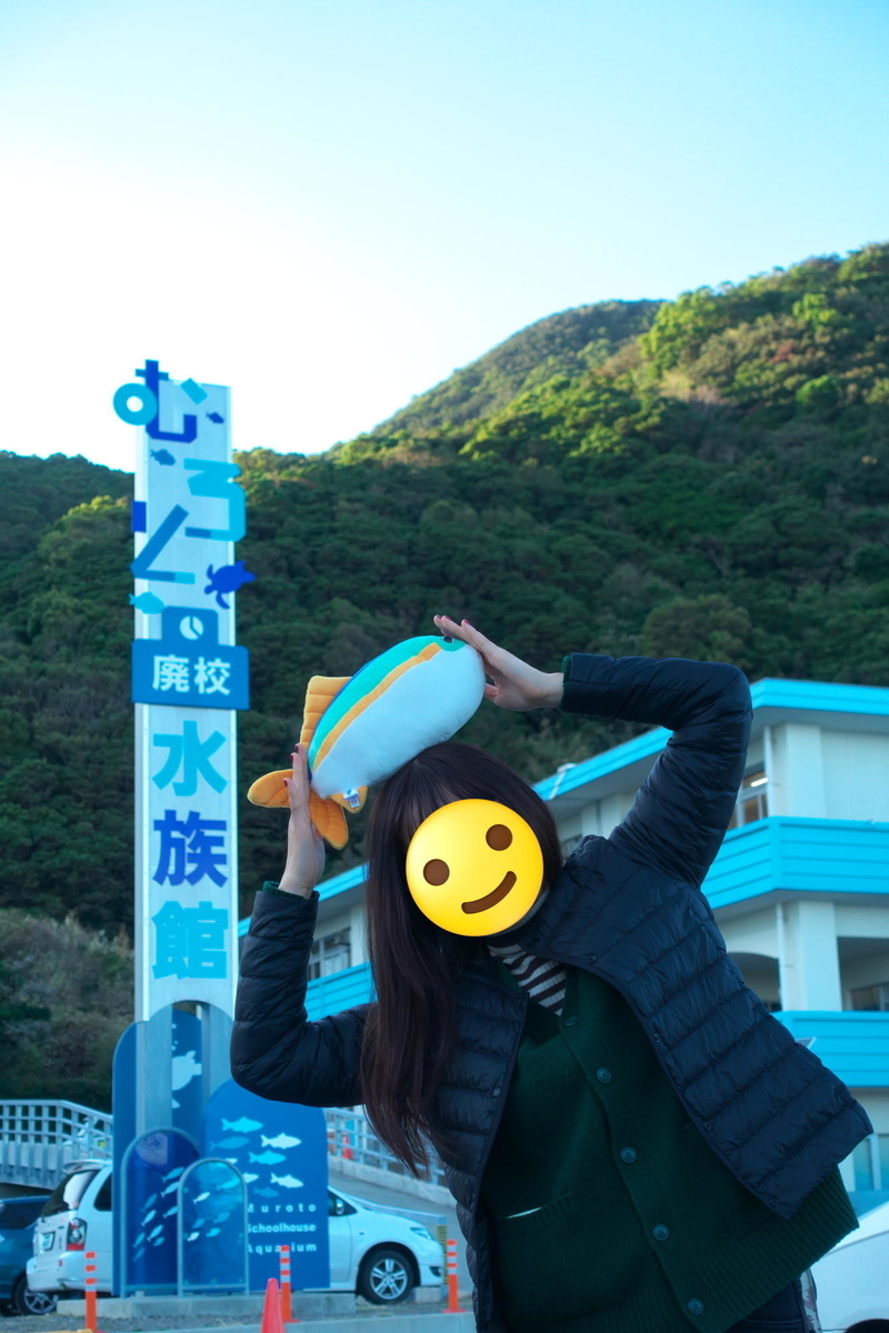f:id:gan_jiro:20191104131723j:plain