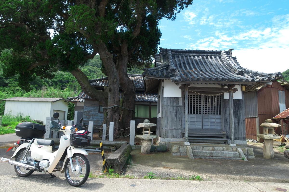f:id:gan_jiro:20200801111835j:plain