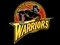 GSW-warrior