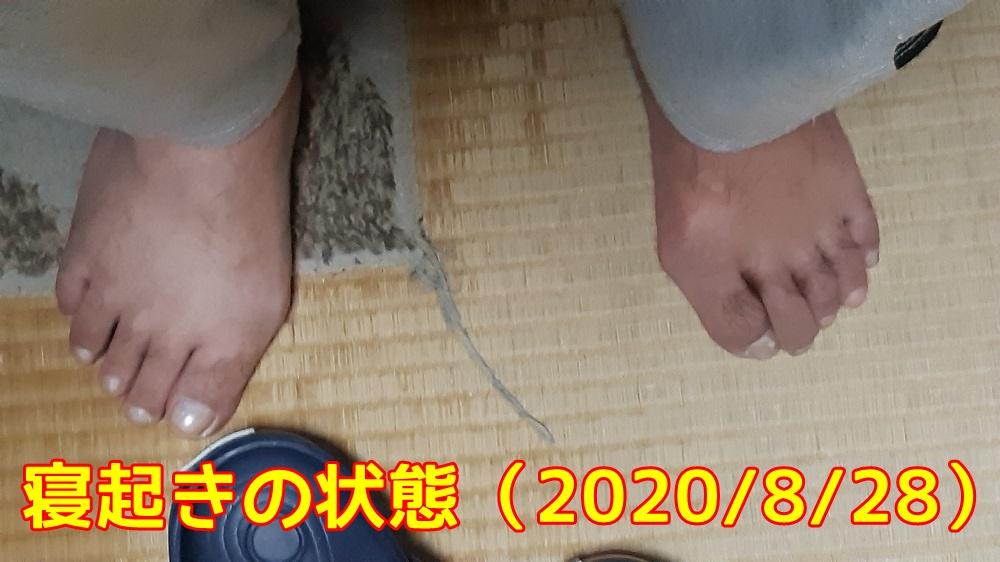 f:id:ganbarubi:20200828085507j:plain
