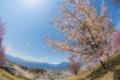 2014年4月25日 池田クラフトパーク