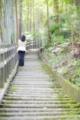 2014年7月23日 祖谷かづら橋