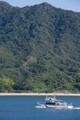 2014年7月26日 広島県大久野島