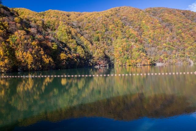 f:id:gaoyang:20141030082616j:image