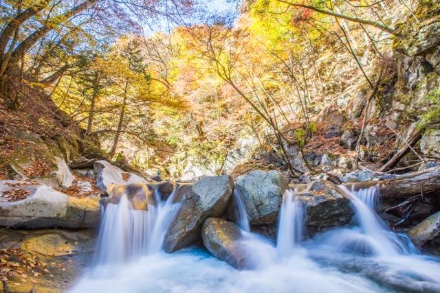 f:id:gaoyang:20141030122849j:image