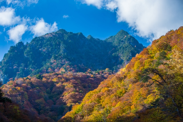 f:id:gaoyang:20141101083351j:image