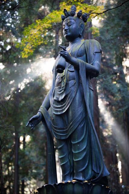 f:id:gaoyang:20141127130203j:image