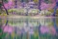 2016年4月23日 半田山自然公園