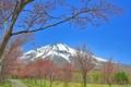 2016年4月25日 岩木山