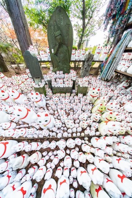 f:id:gaoyang:20181220132007j:image
